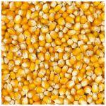 Kukuřice Deli Nature 20kg