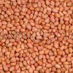 Loupané arašídy 25kg