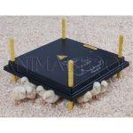 Ohřívací deska pro kuřátka 40x40cm
